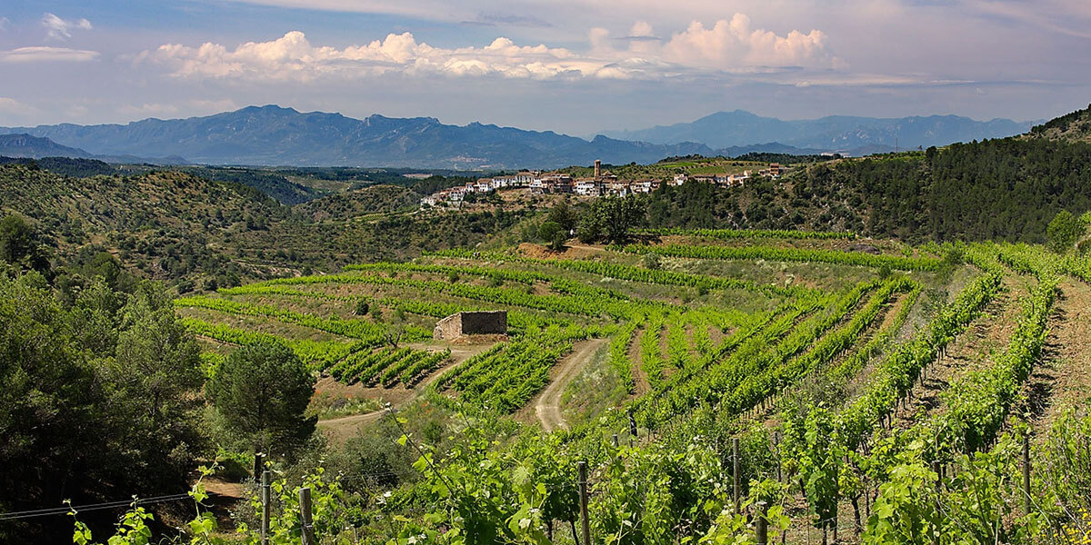 Priorat Day Trip: Countryside and Wine Tasting