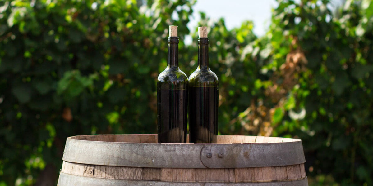 Emporda Escape Wine Tours:  3 days & 2 nights