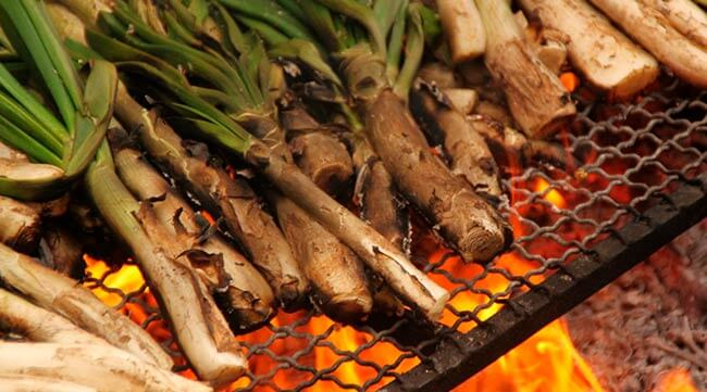 Calçots - the onion you can't reject