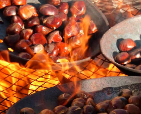 Roasted Chestnuts in Barcelona