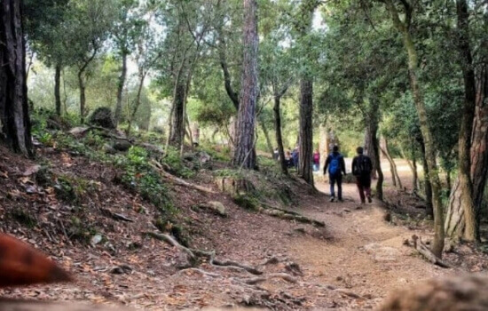 Hiking tour in the nature of Barcelona