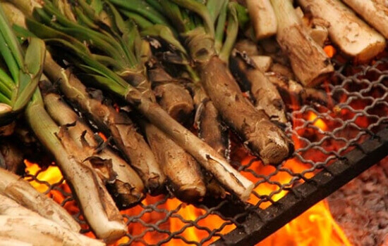 Grilled Calçot, a catalan tradition